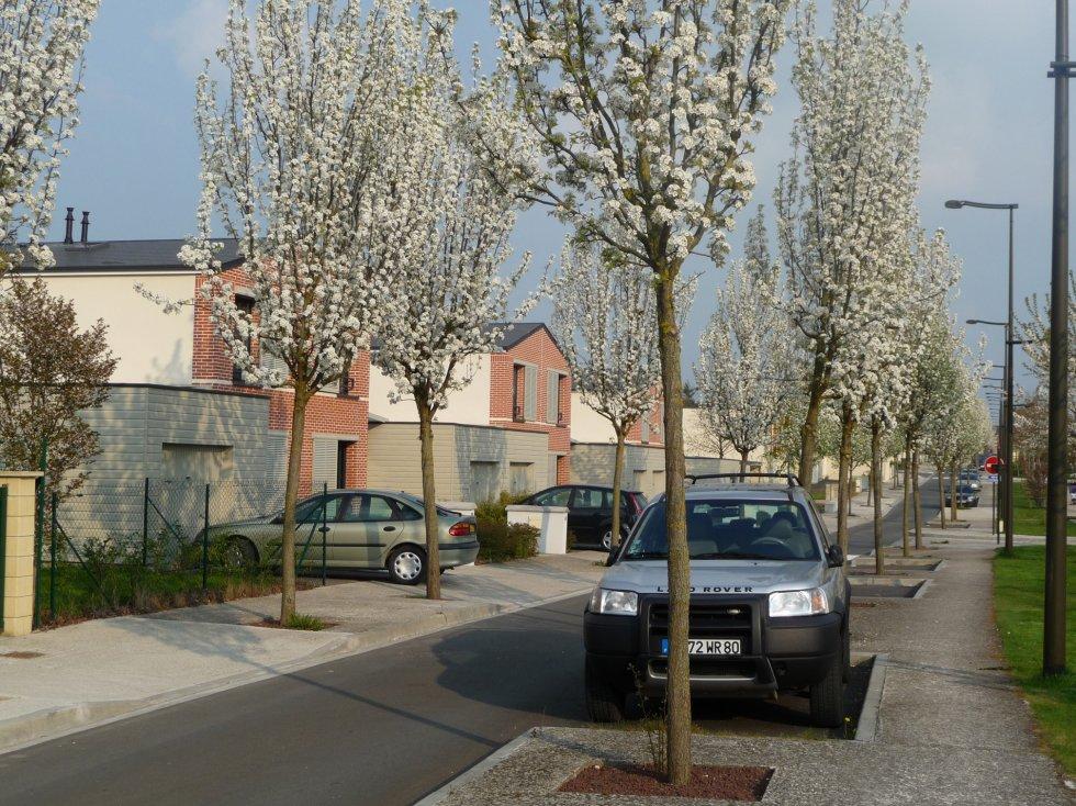 ARVAL architecture - Les villas de Flore – Amiens - 3