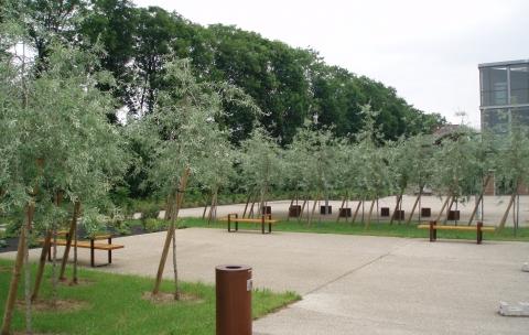 Cité scolaire-Espaces extérieurs – Amiens