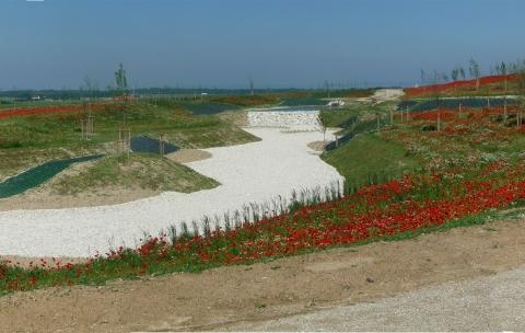 Parc industriel – Récy et Saint Martin sur le Pré
